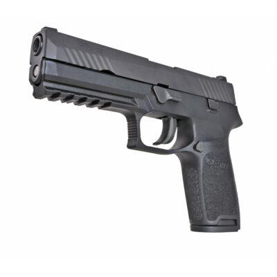 Sig Sauer P320 9 mm Luger